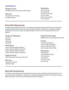 belt_requirements_Page_2